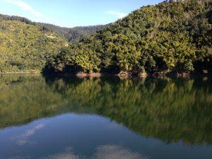 Lake in Kingston - Choose To Be Happy